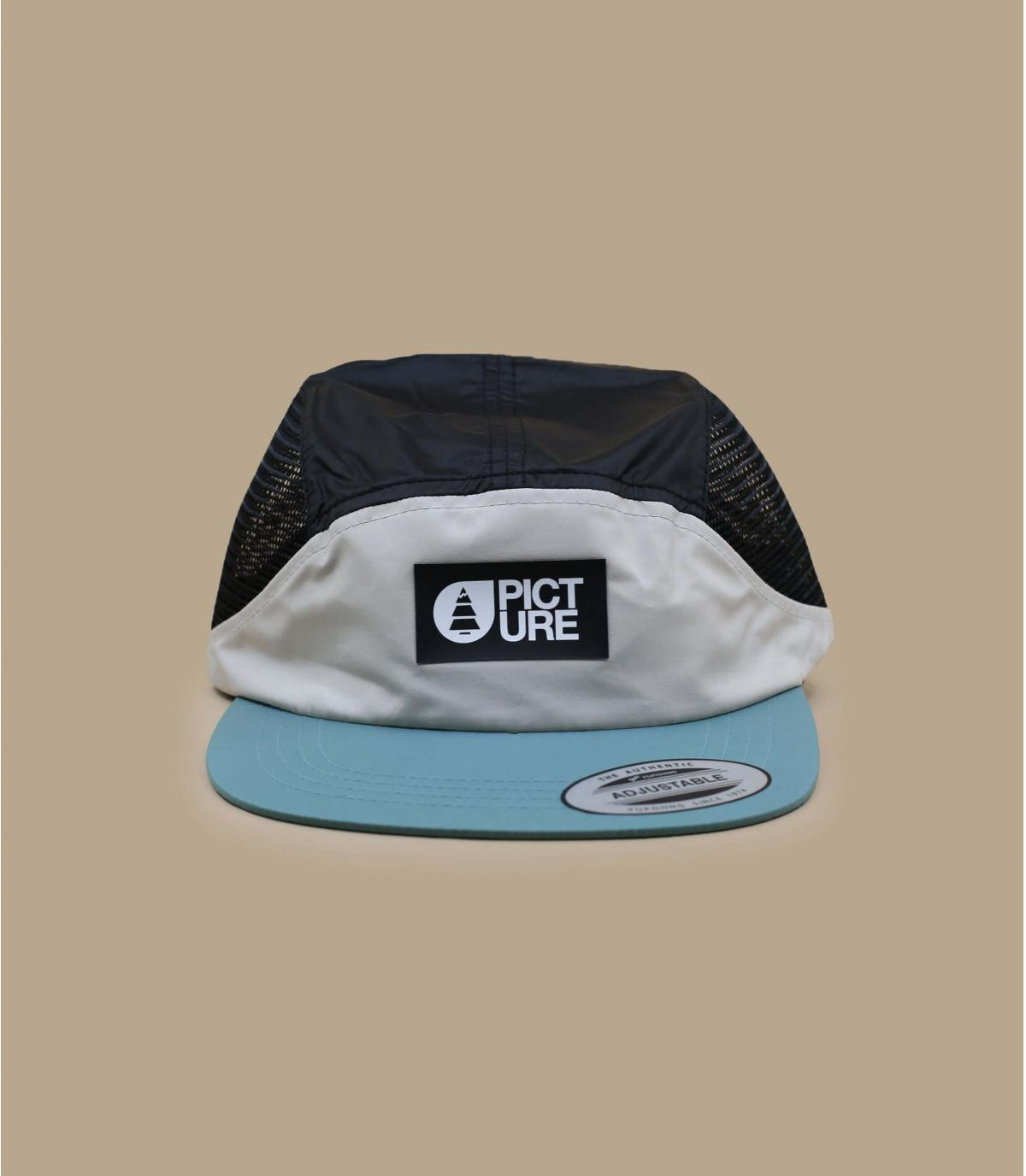5 panel Picture mesh