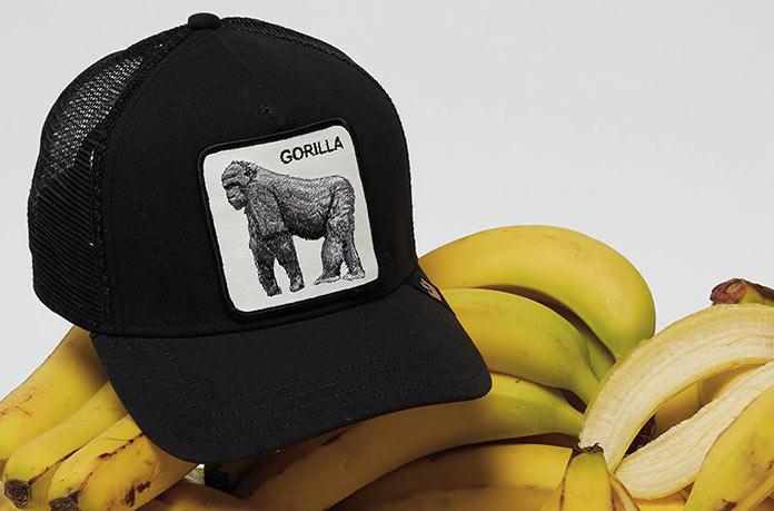 trucker Gorille Goorin